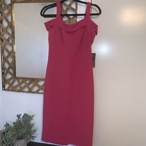 Dresses & Skirts - NWT Pink business casual midi dress